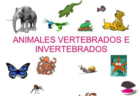 los animales vertebrados animales vertebrados e invertebrados taringa