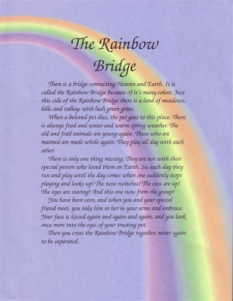 rainbow bridge poem for dogs rainbow bridge poem