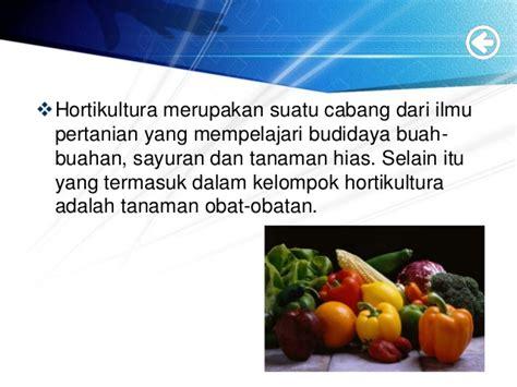 peluang  kendala sektor hortikultura