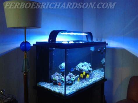 Lu Led Untuk Aquarium Laut inspirasi aquarium laut ukuran sedang ferboes
