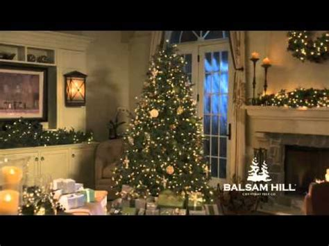 how many lights on a balsam hill tree balsam hill fraser fir christmas tree with clear lights