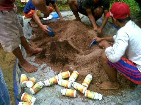 Pupuk Yang Cocok Untuk Tanah Merah cara aplikasi powernutrisi dan supernasa untuk tanaman