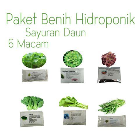 Harga Diskon Paket Benih Sayur 5 In 1 Vegetables Maica Leaf paket benih hidroponik sayur daun purie garden