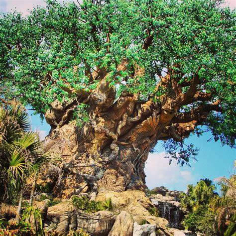 walt disney world resort hotels off to neverland travel tree of life off to neverland travel disney vacations