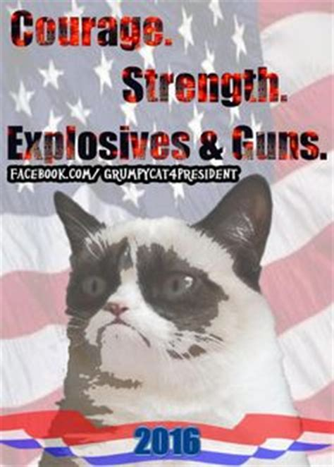 grumpy cat for president 2016 1000 images about grumpy on grumpy cat