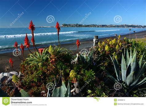 Garden Hawkes Bay Beachfront Garden In Westshore Hawkes Bay New Zealand