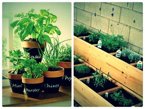 12 Gift Ideas For This Coming Christmas Potted Herb Garden Ideas