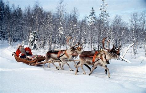 where to buy a sled and reindeer for the roof of your house santa on his sleigh with 4 reindeer stock photo colourbox