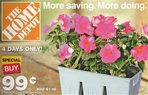 home depot 6 packs annual flowers 0 99