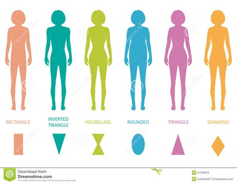 body types and shapes female silhouette women body shapes female body types
