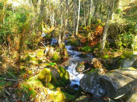 monte aloia nature park espanha r 237 o tripes monte aloia unarutacadadia espacios