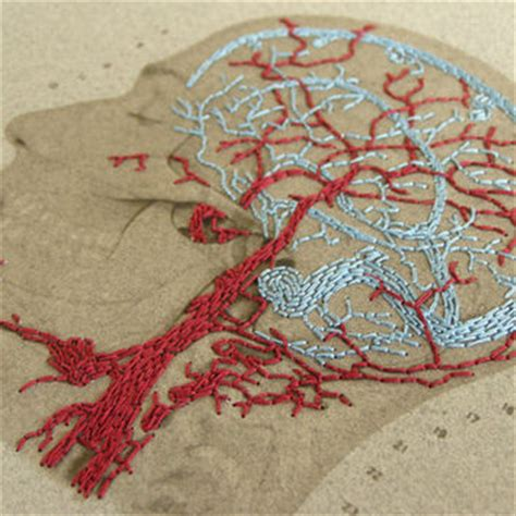 brain anatomy art anatomical embroidered from fabulouscatpapers