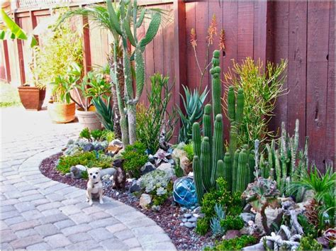 Succulent Gardens by Liven Things Up S Themed Succulent Garden In California