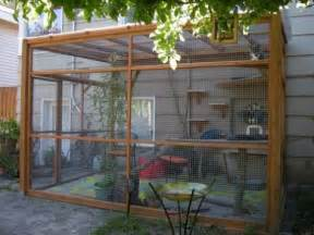 51 outdoor cat enclosures your cat comfydwelling