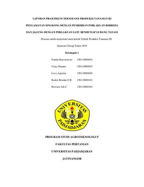 contoh laporan jagung makalah 37 laporan akhir praktikum singkong dan jagung