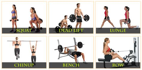 Exercises With A Bench 7 Simple Steps To Conquering Fat Loss For Good