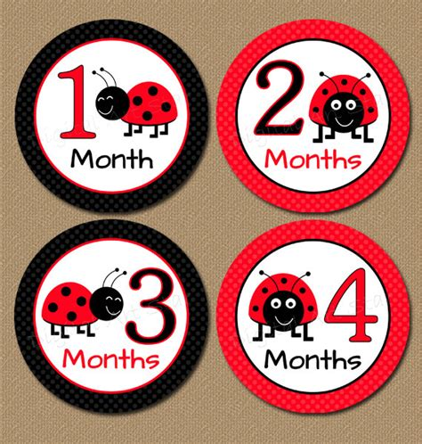 printable iron on stickers baby monthly stickers iron on transfers ladybugs printable