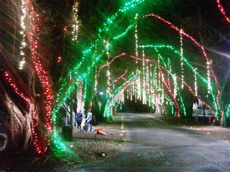top 28 pinecrest christmas lights pinecrest gardens