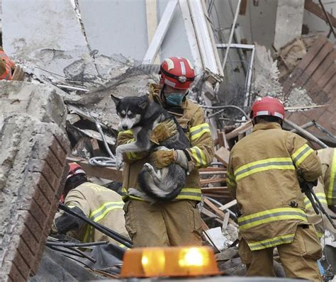 woman  pulled alive  rubble  collapsed sd