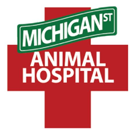 whittier dog cat hospital animal hospital licensed orlando veterinarian michigan st animal hospital