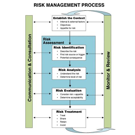 Process Of Risk Assessment Info Graphics Galore Pinterest Risk Management Management And Project Management Process Template