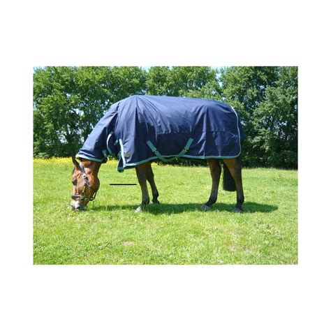 todd turnout rug todd turnout rug meze