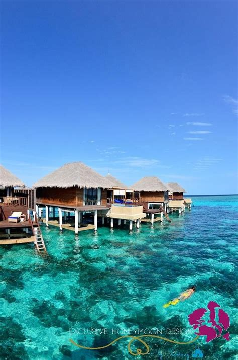 cheap overwater bungalows maldives maldives overwater bungalow vacation