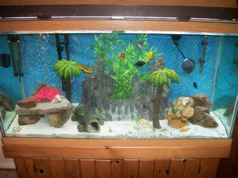 harry potter aquarium decor hogwarts aquarium decorations 1000 aquarium ideas