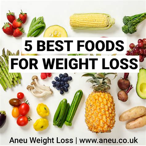 best food for weight loss diet food for weight loss www imgkid the image kid has it