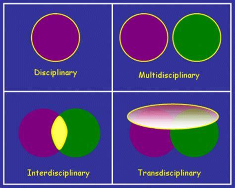 transdisciplinary themes meaning fispypwiki transdisciplinary