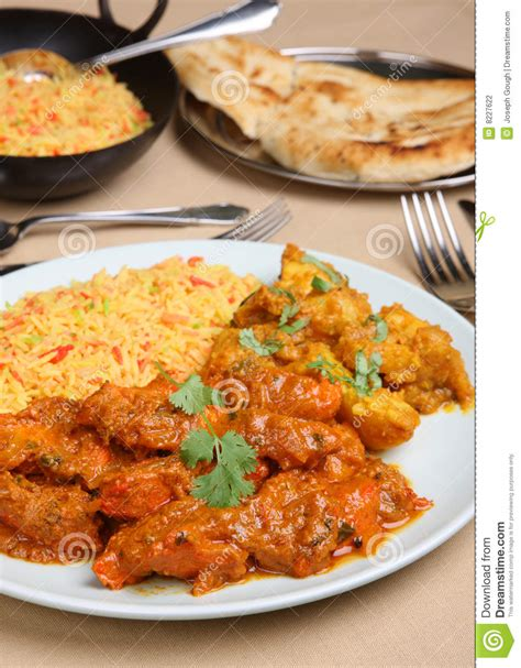 curry payment plan indian curry meal stock photography image 8227622