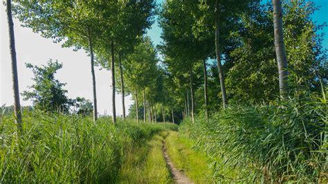 oude wandlen wandeling doorheen de stille waters graafschap bornem 10
