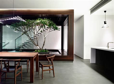 modern houses  interior courtyards design milk
