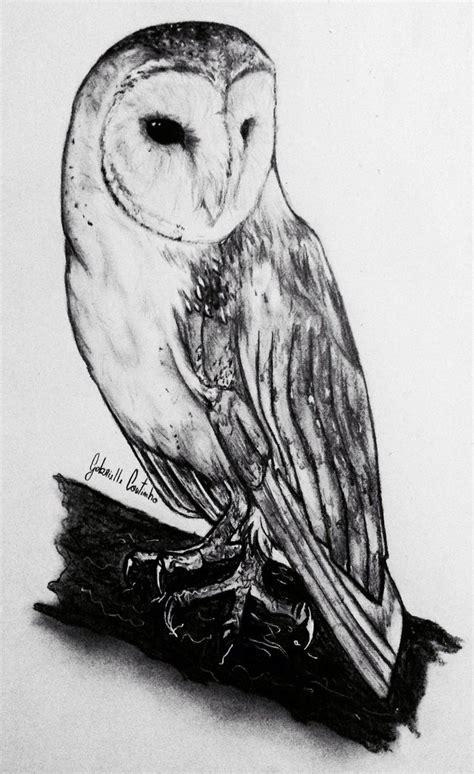 Barn Owl In Pencil By Gabriellec Drawings On Deviantart Barn Owl Drawing