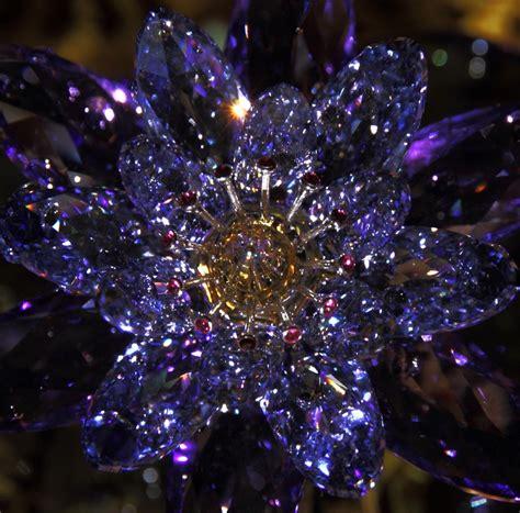 dispensare sinonimi fiore di cristallo dizy foto