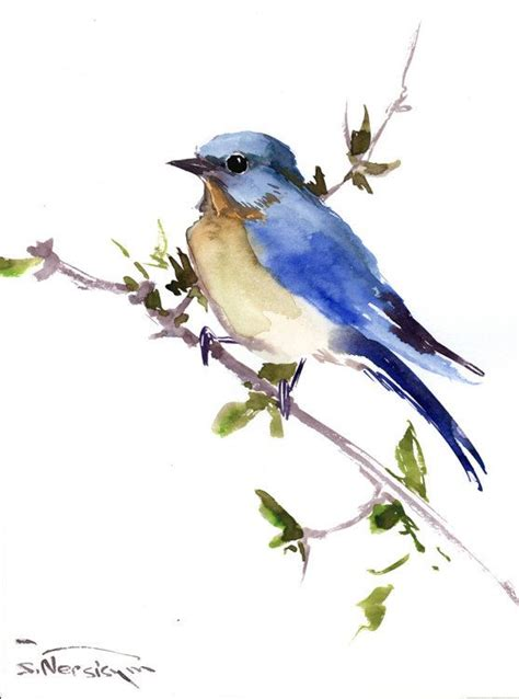 eastern bluebird original watercolor painting 12 x 9 in