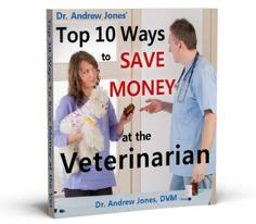 allergy medicine apoquel 1000 images about apoquel on allergies dogs and itchy