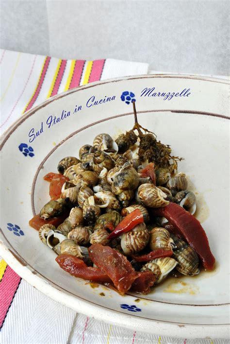 lumachine di mare come cucinarle maruzzelle o lumachine di mare in umido sud italia in cucina