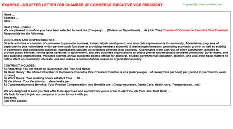 Offer Letter Vp Of Sales Marketing Executive Offer Letters