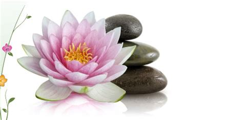 lotus wellness hō ano services wellness counseling coaching