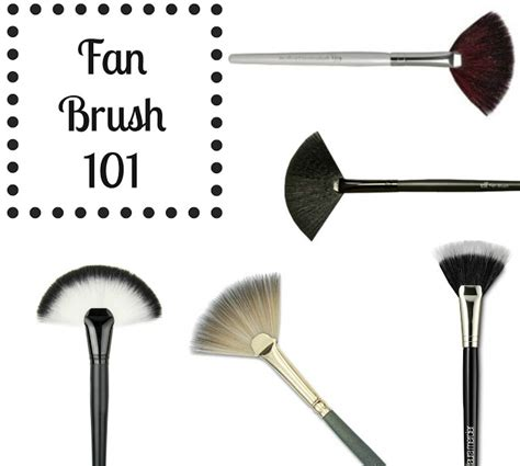 what is a fan makeup brush used fan brush 101 how to use the fan makeup brush the
