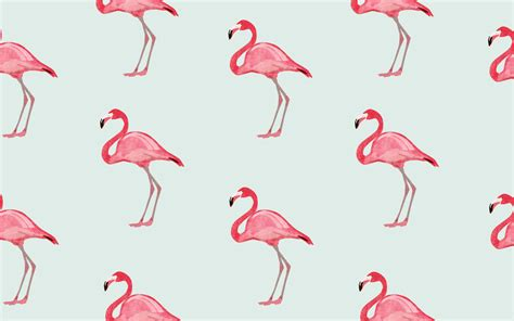 flamingo mobile wallpaper flamingo wallpaper for computer wallpapersafari