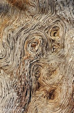 rhythmic pattern drawing texture rhythmic pattern and woods on pinterest
