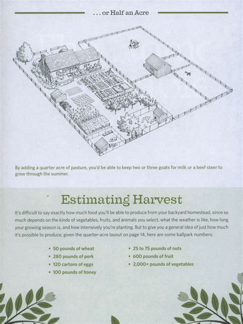 homestead layout plans on 1 acre or less homestead 1 2 acre gardening gardens backyards and farm layout