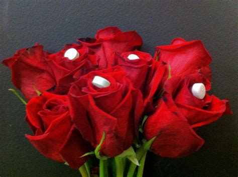Aspirin In Flower Vases by The Enchanted Petal Aspirin