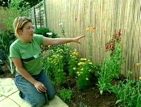 garden invaders wilde life