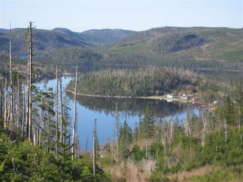 Cabins For Rent In Gros Morne National Park by Bonne Bay Cottages Updated 2016 Cground Reviews