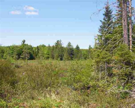 how big is one section of land vacant land for sale landleader moose country 1 4