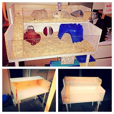 Guinea Pig Cage Shelf And R by Diy Guinea Pig Cage With An Desk Shelf And