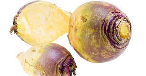 images of rutabaga 11 interesting health benefits of rutabaga food
